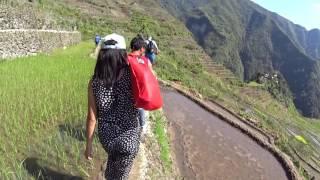 フィリピン編【旅動画】世界を本気で旅してみた Part:7  コルディリェーラの棚田群