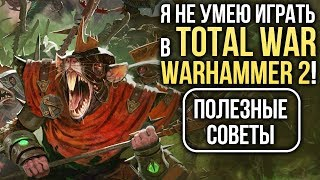 Я не умею играть в Total War: WARHAMMER 2! Полезные советы