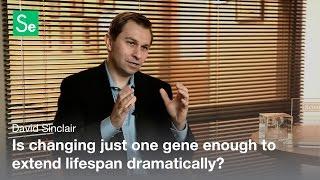 Double Lifespan – David Sinclair / Serious Science