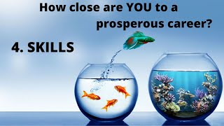 "Skills - Video 4 - Series ""9 Strides to a Prosperous Career"