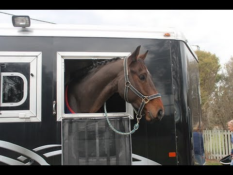 Dressage Day at Horse Trials- Saturday Vlog