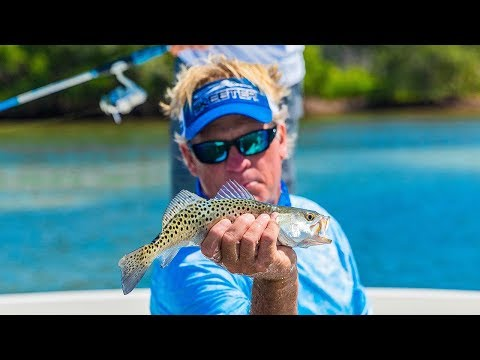 Mosquito Lagoon Fishing Redfish And Trout In Florida