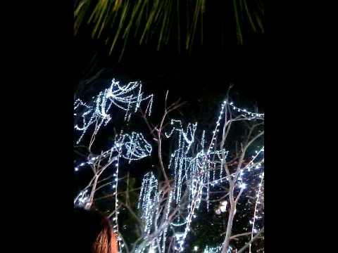 Tuyết rơi nữa đêm Giáng Sinh Đà lạt