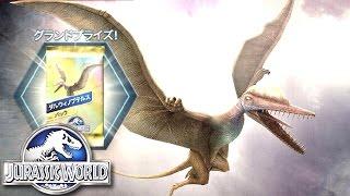 グランドプライズ【ダルウィノプテルス】GETォォー!その性能は・・・#Ep68 ギガのJWTG jurassic world the game 実況 恐竜
