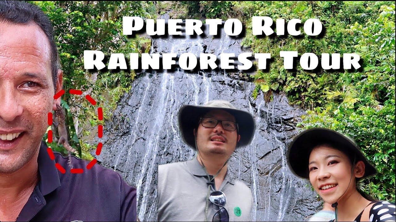 Vlog48| Travel to Puerto Rico Rainforest Tour Vlog - El YUNQUE NATIONAL RAINFOREST