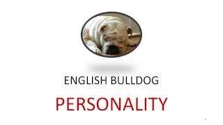 English Bulldog Personality