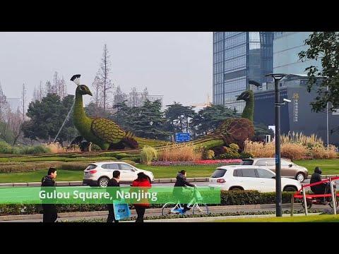Gulou Square | Peacock Square Nanjing Jiangsu Province China