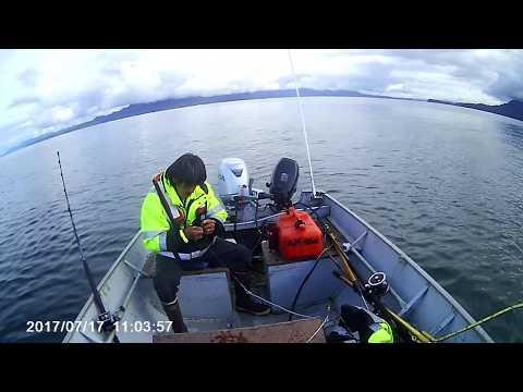 717 Halibut and King Salmon fishing in Alaska