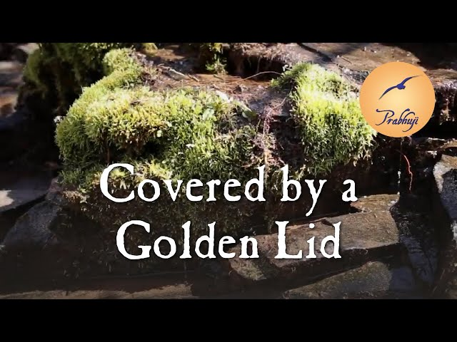 Covered by a Golden Lid -- by Prabhuji