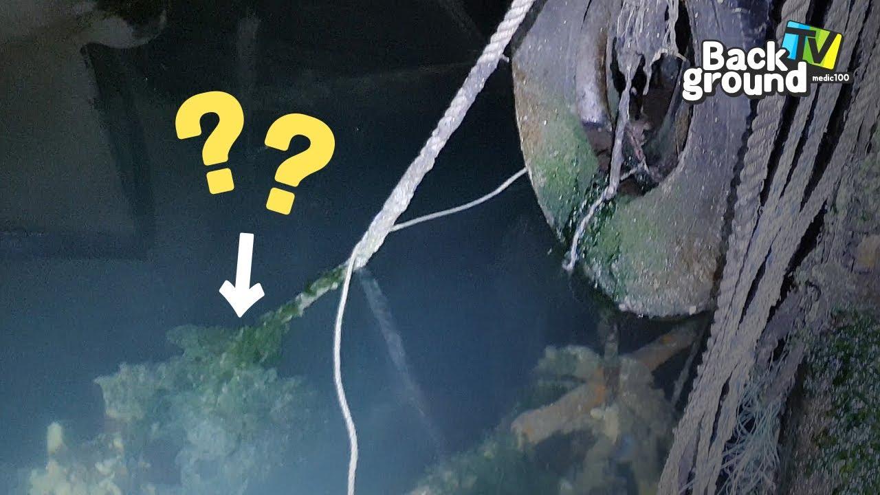 *깜놀주의) 여러분들이 무심코 지나쳤던 항구의 낡은 밧줄엔 깜짝 놀랄 무언가가 있습니다!