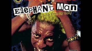 Elephant Man - Give Her Di Conga (Remix)