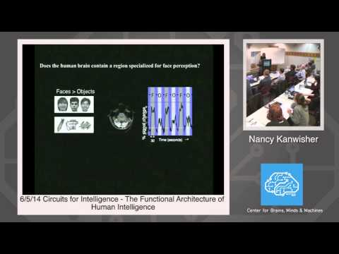 6/5/14 Circuits for Intelligence - Nancy Kanwisher: The Functional Architecture of Intelligence