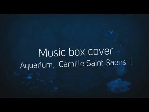 sample: Aquarium Camille Saint Saëns. Creepy Music box. Buy paper strip on Etsy. Custom paper strips