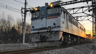 〔4K UHD//sp〕JR貨物・高崎(八高)線:北藤岡・新町~倉賀野駅間、「EF65形」牽引貨物列車、走行シーン。《3097》