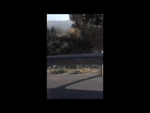 Taxi From Amman, Jordan To Israel Border Crossing At King Hussein Bridge