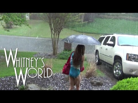 Thumbnail: Leotard in a Hail Storm | Whitney
