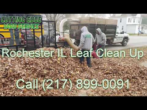Fall Yard Leaf Clean Up Rochester IL