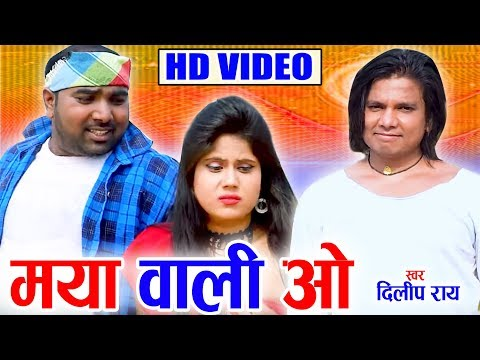 Dilip Ray | Cg Song | Maya Wali O | New Chhattisgarhi Geet | HD Video 2019 | AVM STUDIO RAIPUR