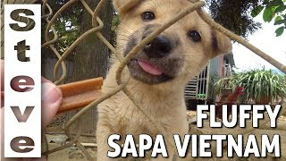 SOFTER SIDE TO SAPA VIETNAM ??