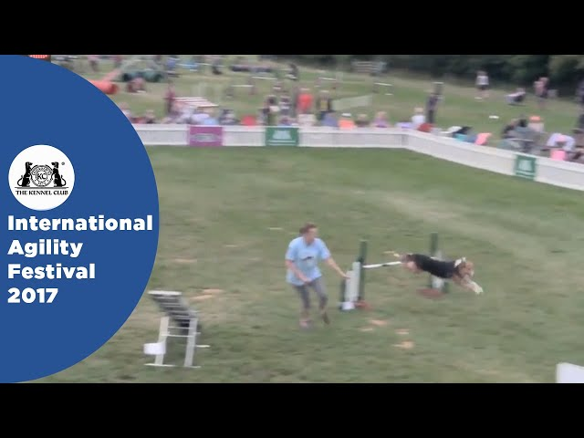 Nations Cup Final Large - Part 1 | International Agility Festival 2017