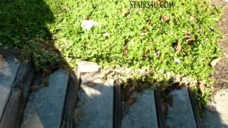 Problems With Wood, Concrete Stairs And Landscaping
