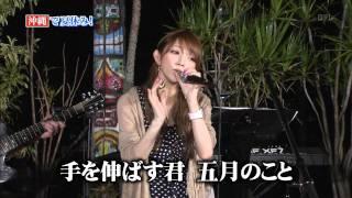 後藤真希 ハナミズキ.