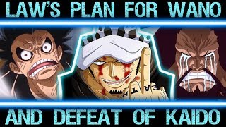 Law's Master Plan to Defeat Kaido in Wano (One Piece Major Theory Explained Chapter 900+)