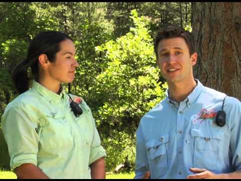 Soaring Treetop Adventures | Zipline Canopy Tours | Durango Colorado