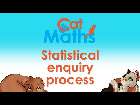 Cat Maths: The Statistical enquiry process