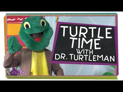 Turtle Time With Dr. Turtleman!
