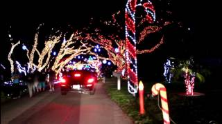 Holiday Lights In Snug Harbor - Palm Beach Gardens, Florida - Event ...