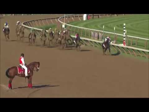 Top 50 Greatest American Racehorses