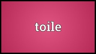 Toile Meaning