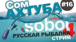 Русская рыбалка 4 - Ловим трофейного Сома на Ахтубе. Стрим #16