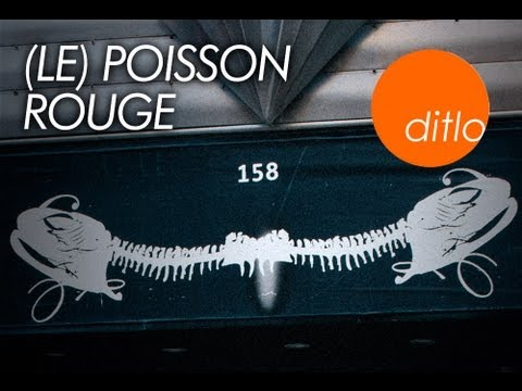 Multimedia art cabaret Le Poisson Rouge opens thier doors to ditlo