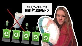 Как сортировать отходы? Zero waste   БОНУС В КОНЦЕ