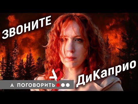 Кто спасёт сибирские леса от пожара? // А поговорить?..