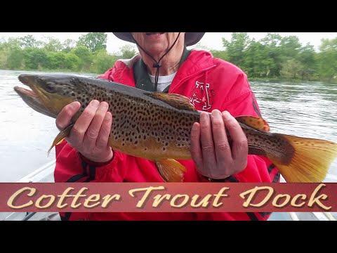 Arkansas White River Trout Fishing Report April 29, 2020