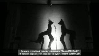 Театр Теней (ТТ) 163 школа к 220 летию 24.05. 20017