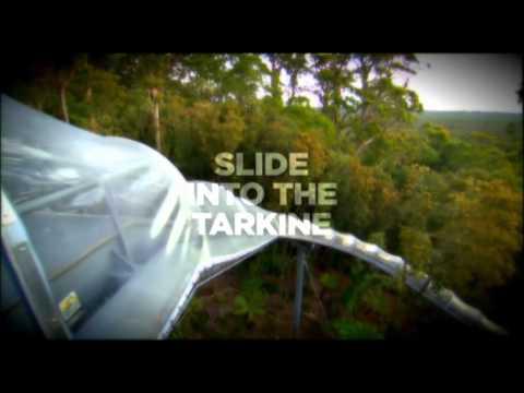 Tarkine Forest Adventures, North West of Tasmania near Smithton