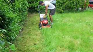 Max Birthday Craftsman Lawn Mower