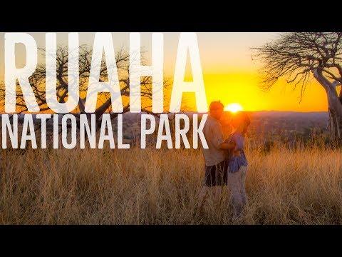 Tanzania: Ruaha National Park - African Safari Diary #5