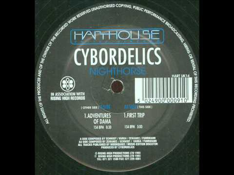 CYBORDELICS - ADVENTURES OF DAMA