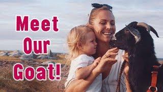 MEET OUR RESCUE GOAT! | Yoga Girl | Rachel Brathen