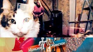 Мужское / Женское - Кошки Блохиной.  Выпуск от21.12.2016