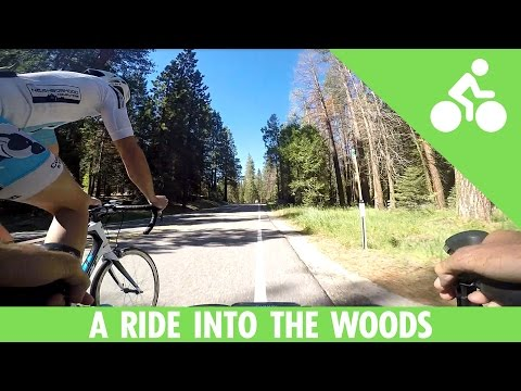 Just a Bike Ride Into the Woods of Northern California