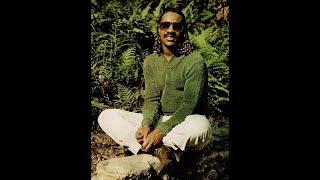 Stevie Wonder Send One Your Love Instrumental Version
