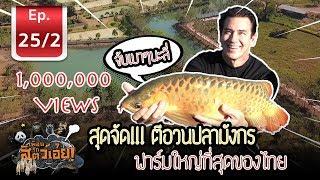 ตีอวนปลามังกรฟาร์มใหญ่ที่สุดในไทย (Thailand