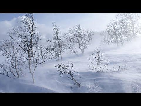 В Кыргызстан пришла зима. Весенние аномалии