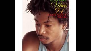 Garnet Silk -  Zion in a Vision (21st Anniversary Tribute)